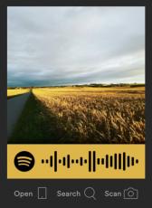 Spotify_scan
